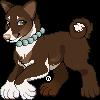 SilverPocky's avatar