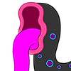 SilverRomance's avatar