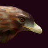 silversandshark's avatar
