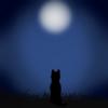 silverwhitewolf3947's avatar