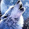 SilverWolfEdits's avatar