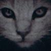 silverwolfer's avatar