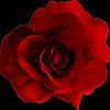 simpleton-s's avatar