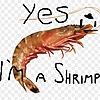 SimpSpaceShrimp's avatar