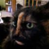 Sintaka5499's avatar