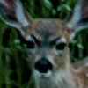 SirPaahdin's avatar