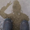 Siskerdoodle's avatar