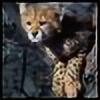 sjhawkeye's avatar