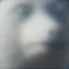 sjofisk's avatar