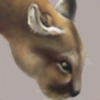 SKdrift's avatar