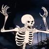 SkeletonThrashWizard's avatar