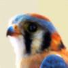 Skitterklat's avatar