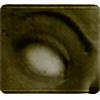 Skrinkie's avatar