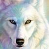 Skxsunwolf's avatar