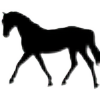 Sky-Stables's avatar