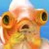 SkyFlu's avatar