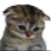 SkylaCatBean's avatar