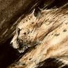 Skylerskadi's avatar
