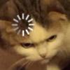 SkyMeowCute's avatar