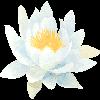 sleepran's avatar