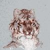 Sletmi's avatar