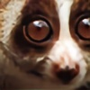 slow-loris's avatar