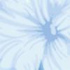 SmallxSmile's avatar