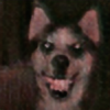 SmileDogSmile's avatar