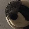 smolbeanrawr's avatar