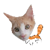 Smollcatluvs's avatar