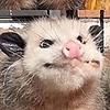 Snicker-Kitty's avatar