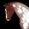 SnootTheAllMighty's avatar
