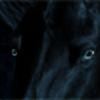 Snow-drifts's avatar