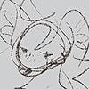 SoggyToat101's avatar
