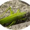 sokiane's avatar
