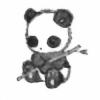 SollarThePanda's avatar