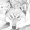 Sollerion's avatar