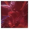 SonicOOO000's avatar