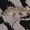 SonofWifly's avatar
