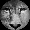 SophiaEowyn's avatar