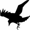 Sora-kun808's avatar