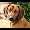 Soran1701's avatar