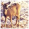 Soycyn's avatar