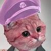 Sp00kyPumpkin's avatar
