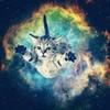 SpaceCat010's avatar