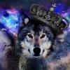 spacewolf45's avatar