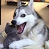 SparkleAJ's avatar