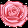 Sparkriel's avatar