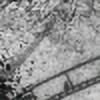 Sparrow-'s avatar