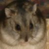 sparx222's avatar